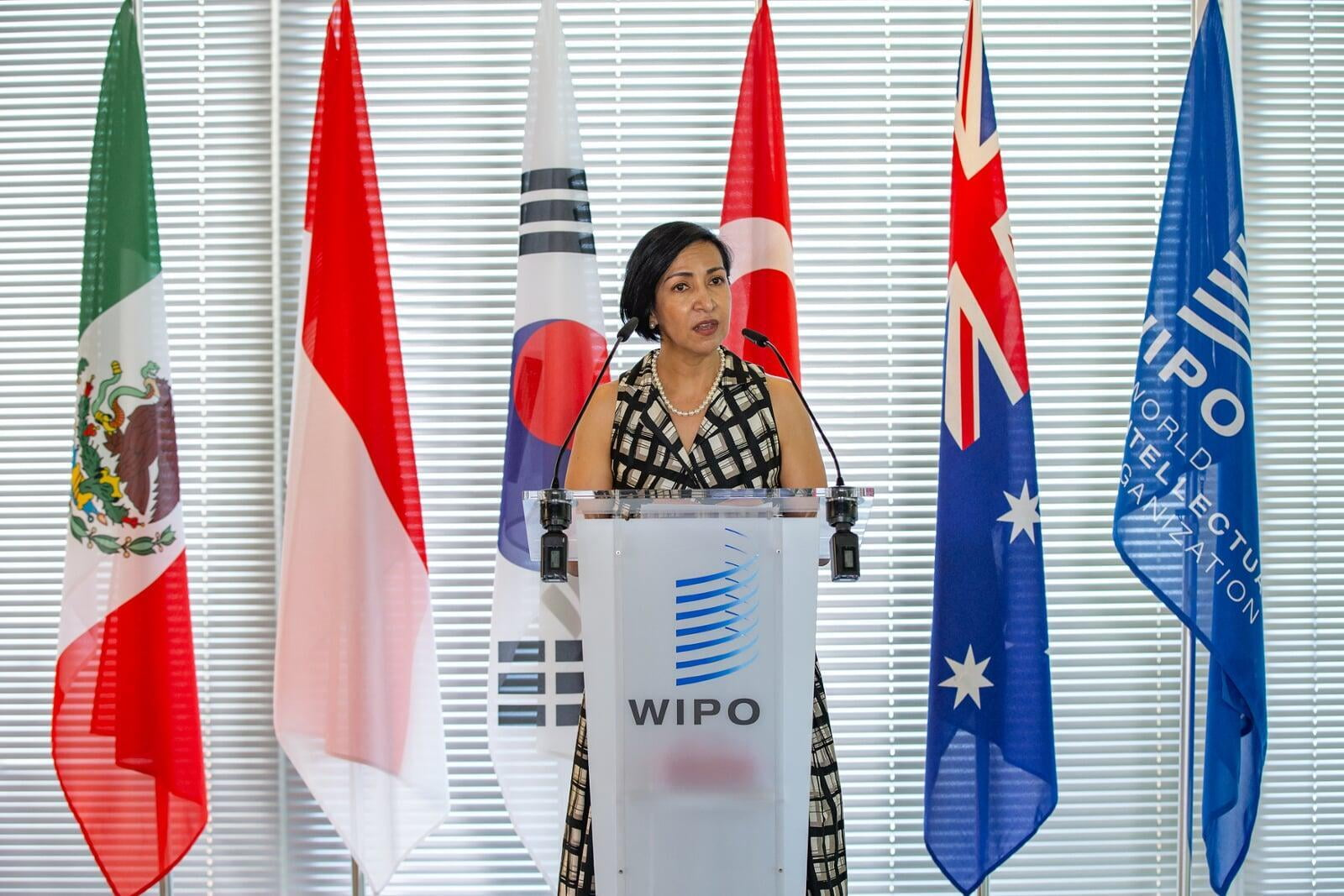 Director of the IMPI at an international WIPO conference.